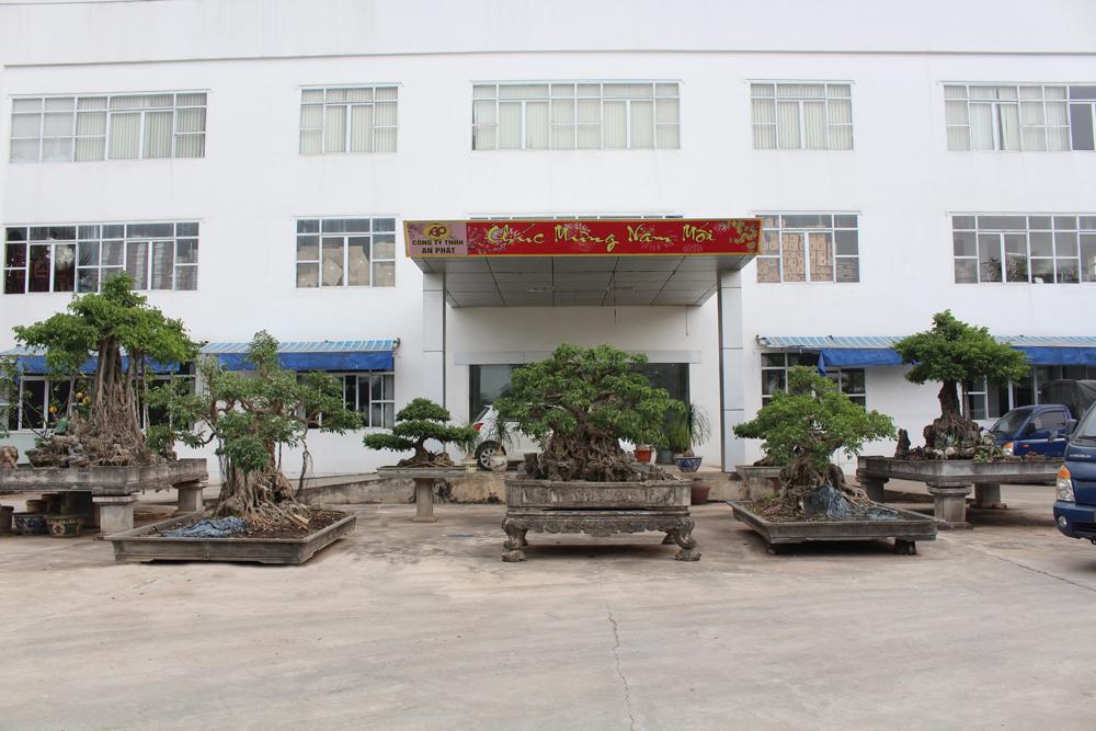 Nhà xưởng công ty TNHH An Phát với quy mô 6.000 m²