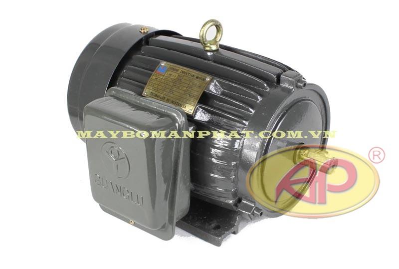 Động cơ điện 1 pha Guang Lu