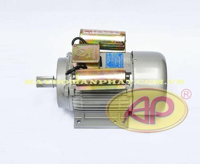 Động cơ điện Quang Lục nhìn ngang